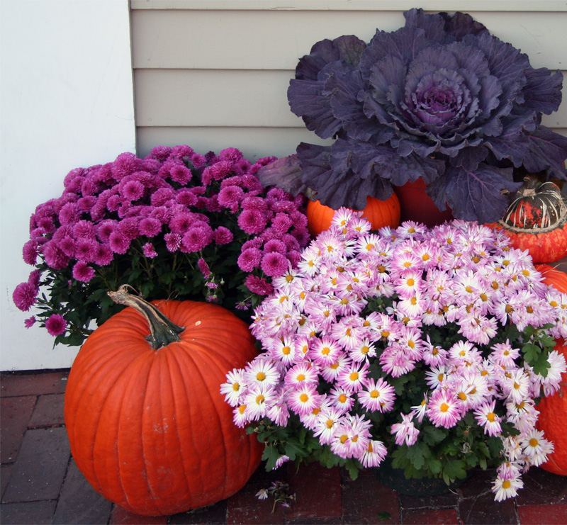 Halloween arrangement