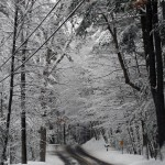 winter-road-1