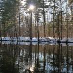 last-winter1